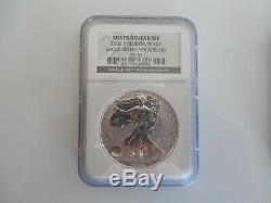 2006 P American Silver Eagle Reverse Proof PF 70 Silver Dollar Set 20th Anniv