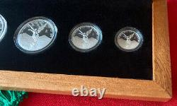 2020 Mexico 5-coin Libertad Silver Proof Set in Display Box Rare, Low Mintage
